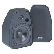 BIC America DV52si (Black) Indoor/Outdoor Speaker